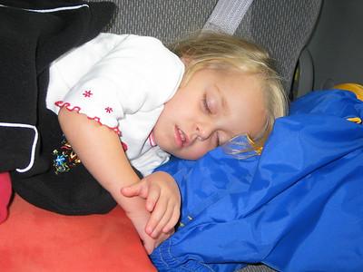 Snoozing in the car, Sitka, Alaska