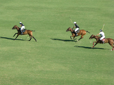 Dancing horses! 114th Argentine Open - C: 4:30 PM Field 1 - Chandon Cup