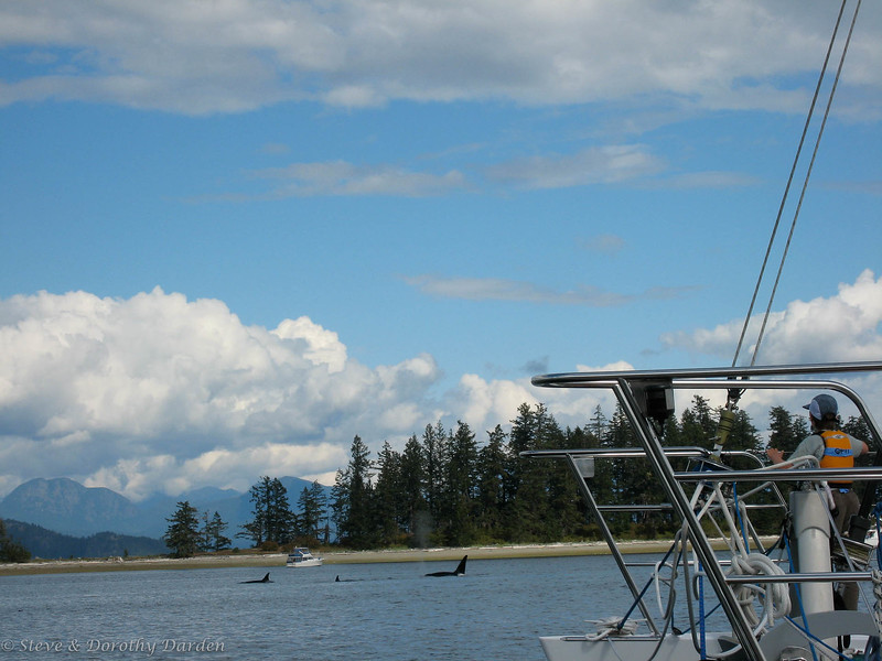 David is watching the orca pod as it swims past ADAGIO at Taku.