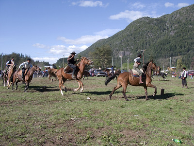 This was a kind of musical chairs on horseback. While the music played, the horses would ride past wooden stumps placed in a circle.