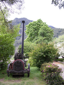 Steam engine in the Hotel Peulle gardens. The tree in the background is an enormous buckeye (horse chestnut) tree in full bloom.