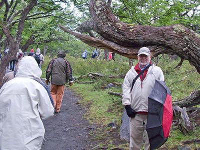 Steve in the Lenga forest.