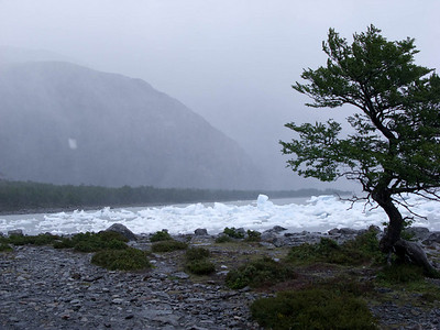 A view from the beach to the foggy fjord beyond. It is incidentally raining horizontally on the beach. We find the treeline offers surprisingly effective shelter.