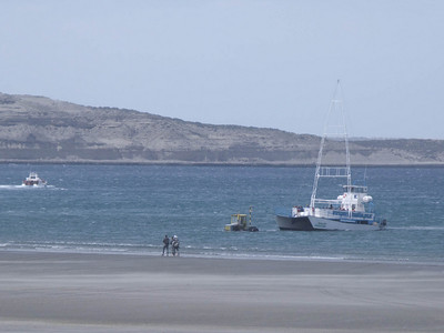 A tractor retrieves the catamaran tour boat from the bay.