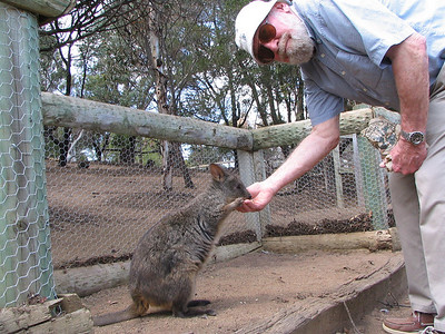 Lester enjoyed feeding a Pademelon.