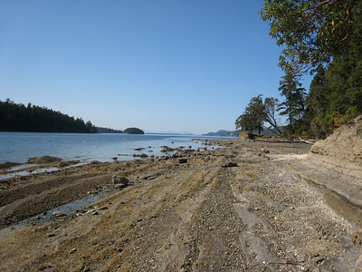 View from the shoreline trail of Gray Peninsula,