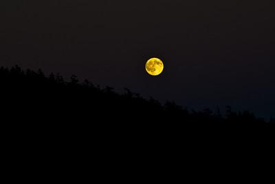 Full moon rise in Tribune Bay, Hornby Island