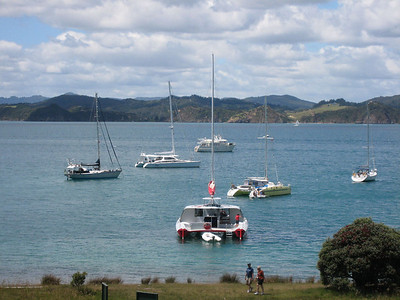 Foreground is Carino NZ and her intrepid skipper Vanessa. PAJET, ADAGIO, KARMA to the left.