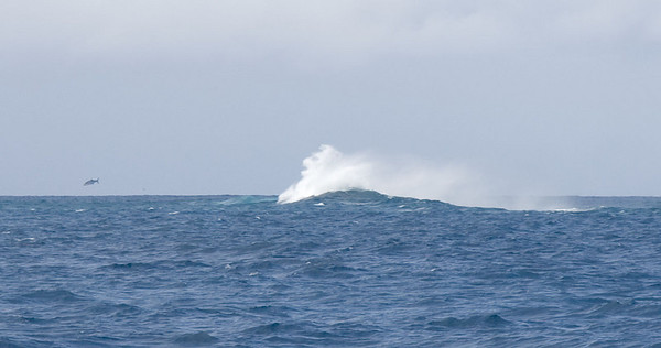 Seas breaking on the reef at Boulari Pass.  Do you dee the fish jumping out of the water to the left of the wave?