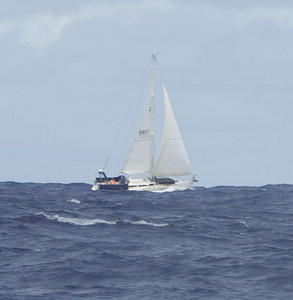 The sailing vessel BRETON was also sailing to New Zealand. We spoke to him on the VHF radio.