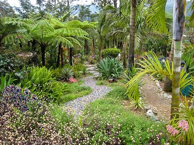 The garden plants were beautiful as well.
