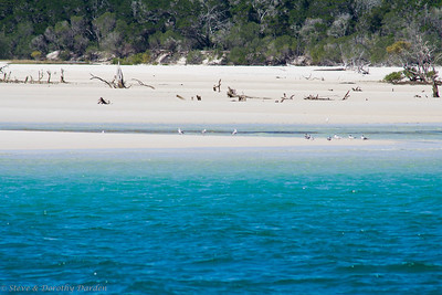 Fraser Island is the largest sand island in the world.