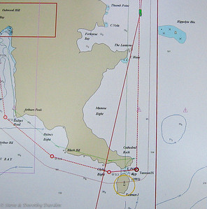 Chart showing ADAGIO's route through the cut between Tasman Peninsula and Tasman Island