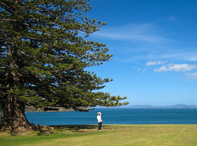 Dorothy beneath the Norfolk Island Pine. The wind was so strong she was holding her hat on with her left hand.