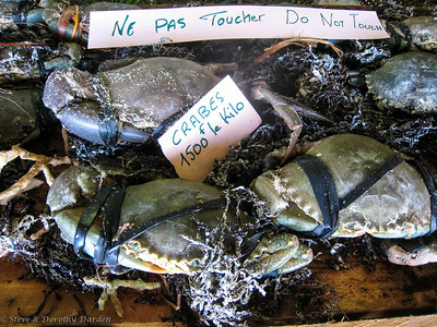Black crabs were selling for 1500 franks per kilo.