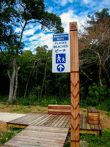 A new boardwalk along the shore at the beginning of the trail