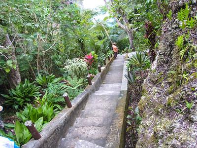 200 steps downhill to the Jokin Cliffs