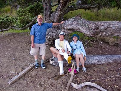 Steve, David and Susan under the Pohutukawa in Wairoa Bay