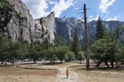 Yosemite Valley, June 7, 2015