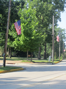 Flags on Univ Ave 2