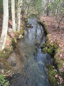 Knoll Stream