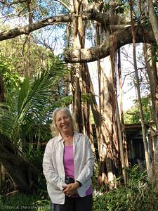 Dorothy before Cleo's Banyan tree