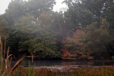 Happy fall! Photo by Alex Lipscomb