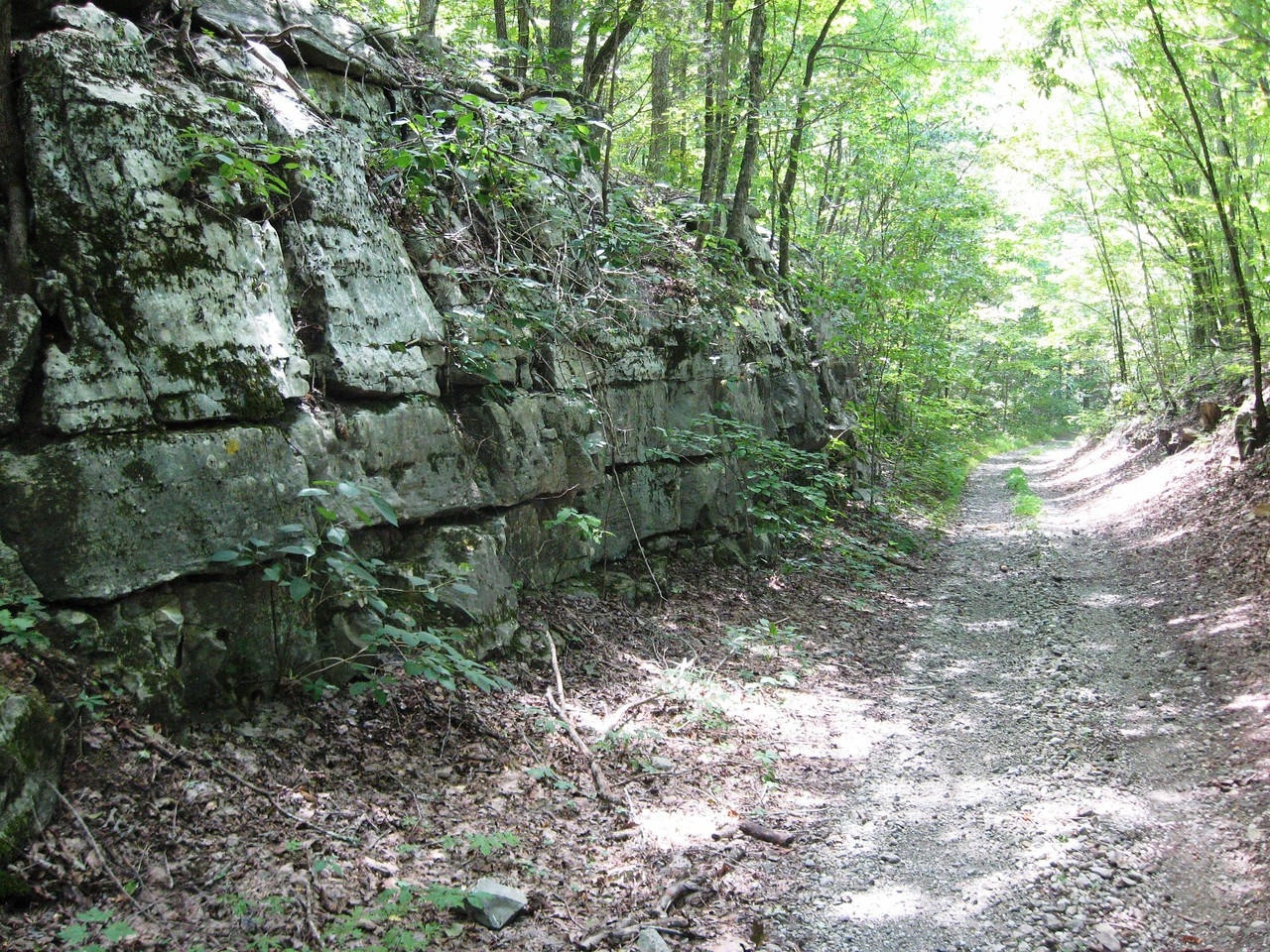 The northern property boundary is a former railroad right-of-way that is in the process of being transformed into part of the Mountain Goat Trail