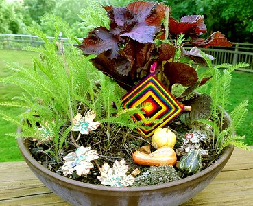 An example of a Fairy Dish Garden.