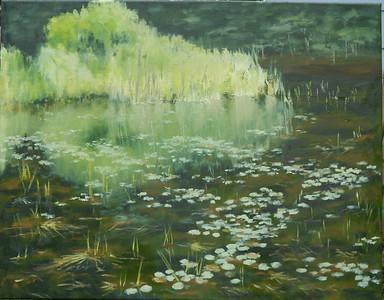 The Pond on Gudger Road