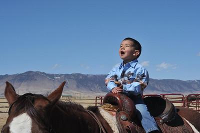 AJ the Cowboy