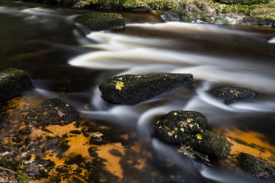 River Teign Detail