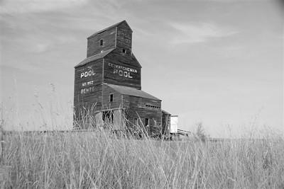 YE-BW-Prairie-Heirloom-BrownH