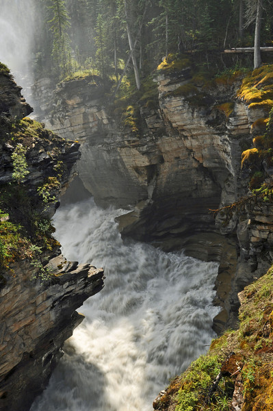 Winner of the Year-end Open Color category for the best Print  Athabasca Falls by Hans Holtkamp