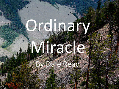 Ordinary Miracle by Dale Read