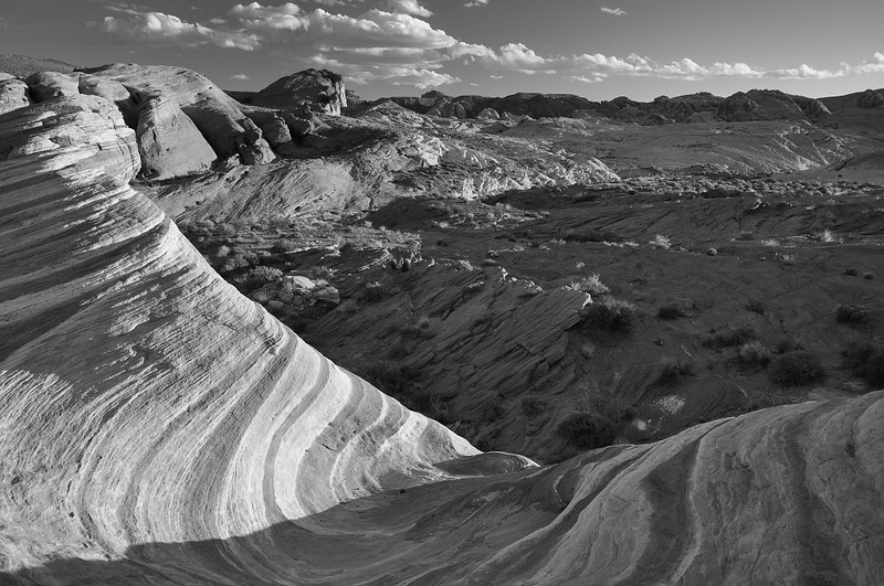BW-The Wave-Kathy Meeres