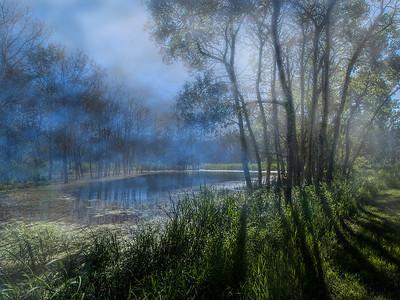 AR-Misty Morning-Barry Singer