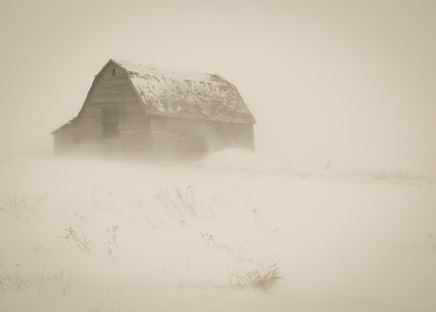 A Prarie Winter
