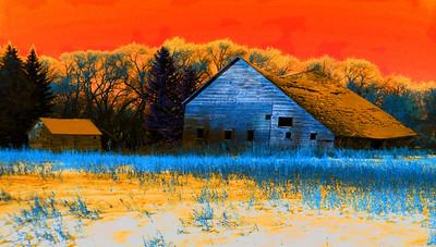 AR-Under The Tangerine Sky-Helen Brown