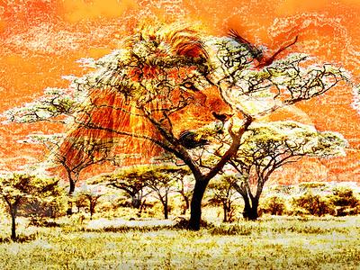 AR-Serengeti Heat-Barry Singer
