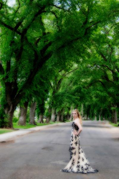 AR-Living In A Dream-Amy Wildeman