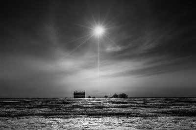 BW-Isolation-Michael Murchison