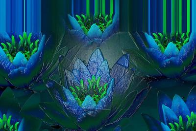 AR-My Avatar Garden-Helen Brown