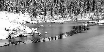 BW-Winter Reflection-Jacqui Ferguson