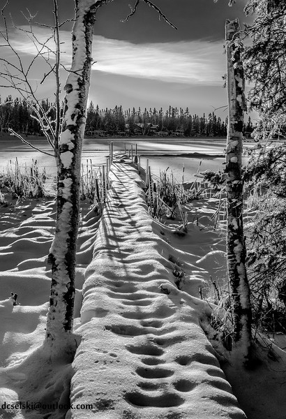 1Print-BW-Snow Walk-Denis Nowoselski