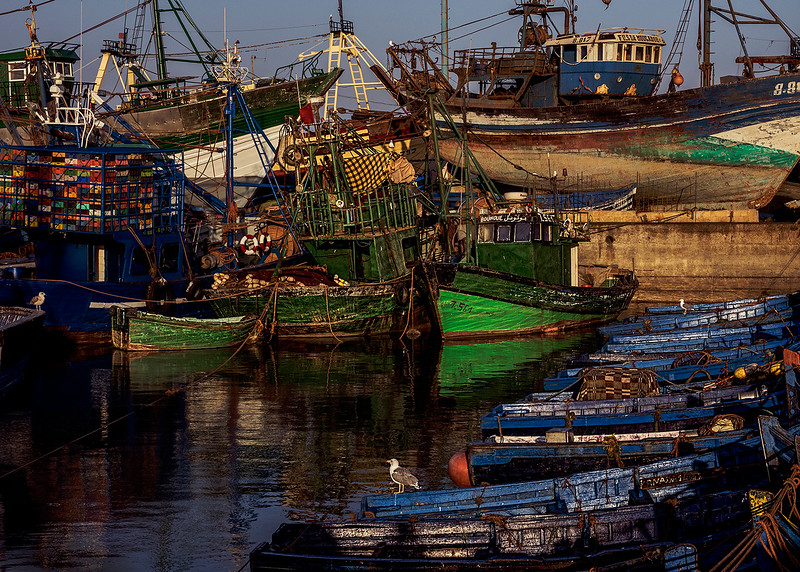 1Print-TR-Fishermen's Harbour Morocco-Barry Singer