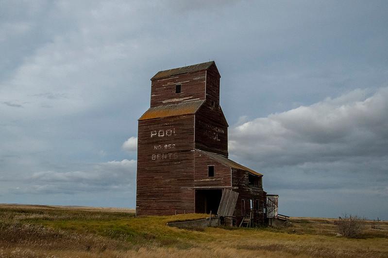 1Print-TR-Prairie Icon-Dale Read