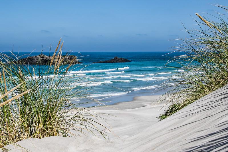 1Print-TR-Smails Beach-Bob Holtsman