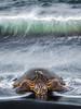 1Print-TR-Wet Nap-Michael Murchison