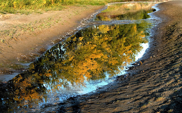 1Print-TR-Autumn Reflections-Helen Brown